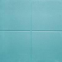Olympic Grade Premium Rubber Gym Tiles