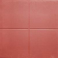 Olympic Grade Premium Rubber Gym Tiles